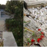 Seashell-Path-Stairs-LivingScapes-Gardenista