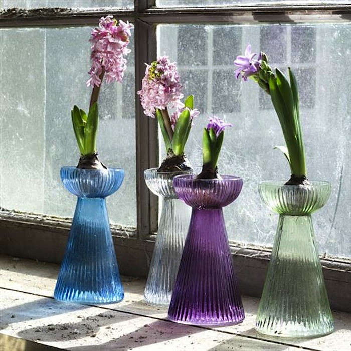 Set-of-Four-Hyacinth-Bulb-Vases-Gardenista