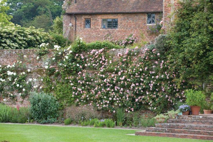 Sissinghurst-Jonathan-Buckley-photo-wall-roses