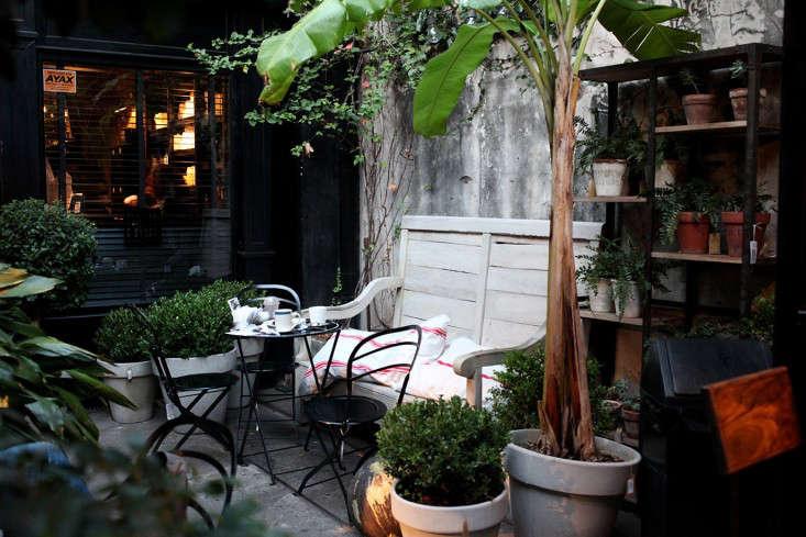 Sophia_MOreno_Bunge_Gardenista_Paul_Buenos_Aires8