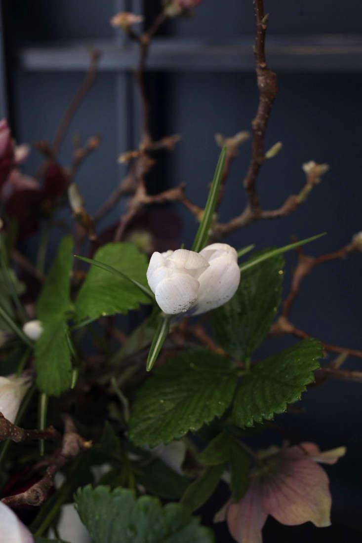 Sophia_Moreno_Bunge_Emily_Thompson_Gardenista_Seasonal_Arrangement_Greens