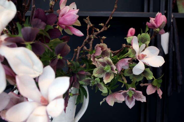 Sophia_Moreno_Bunge_Emily_Thompson_Gardenista_Seasonal_Arrangement_hellebores