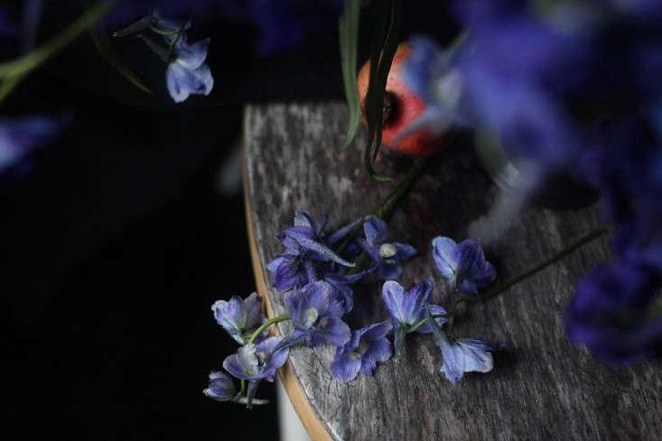 Sophia_Moreno_Bunge_Gardenista_Beglian_FLower_Stems