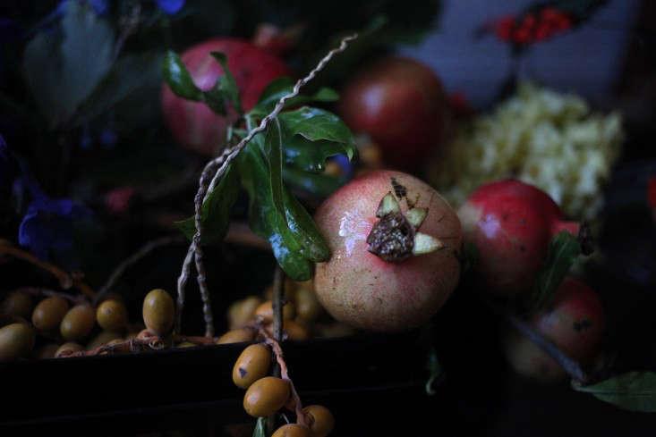Sophia_Moreno_Bunge_Gardenista_Belgian_Pomegranate