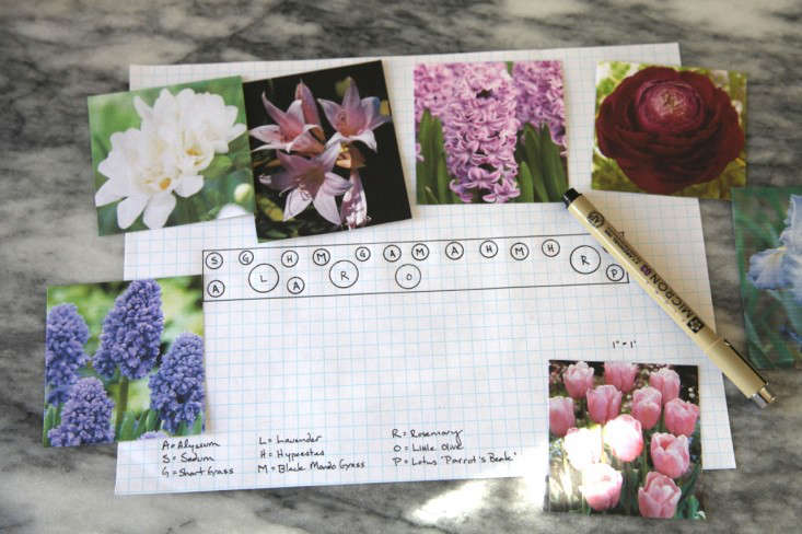 Spring Bulb Planting Chart, Gardenista