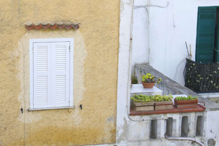 Steal-this-look-terra-cotta-window-boxes-meredith-swinehart-gardenista