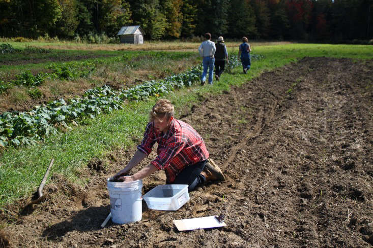 Sterling College in Craftsbury Vermont, taking soil samples, by Justine Hand for Gardenista