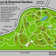 Strybing_Arboretum