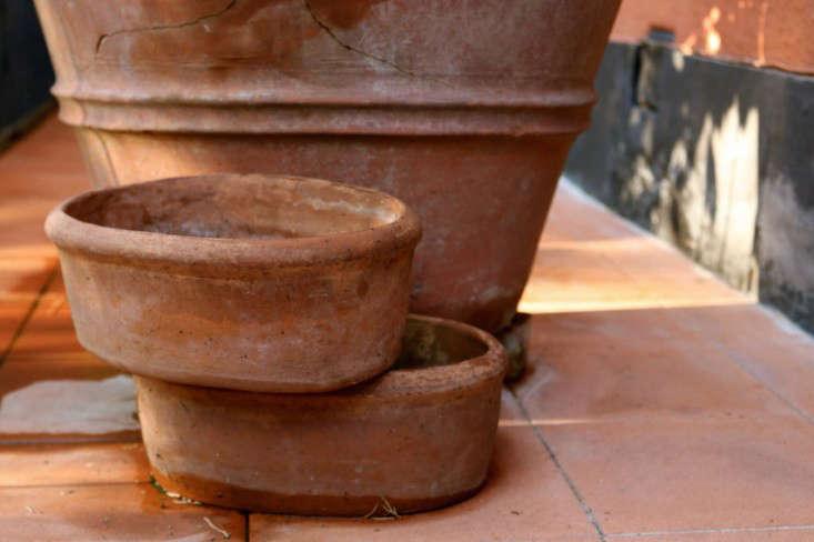 Summer-Courtyard-Garden-In-Italy-Gardenista-11