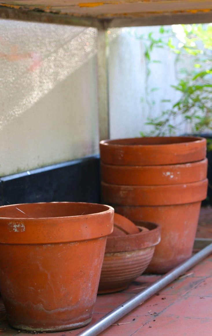 Summer-Courtyard-Garden-In-Italy-Gardenista-15
