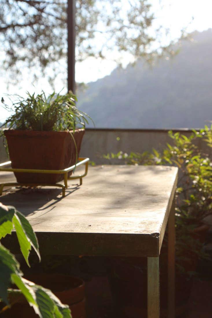 Summer-Courtyard-Garden-In-Italy-Gardenista-16