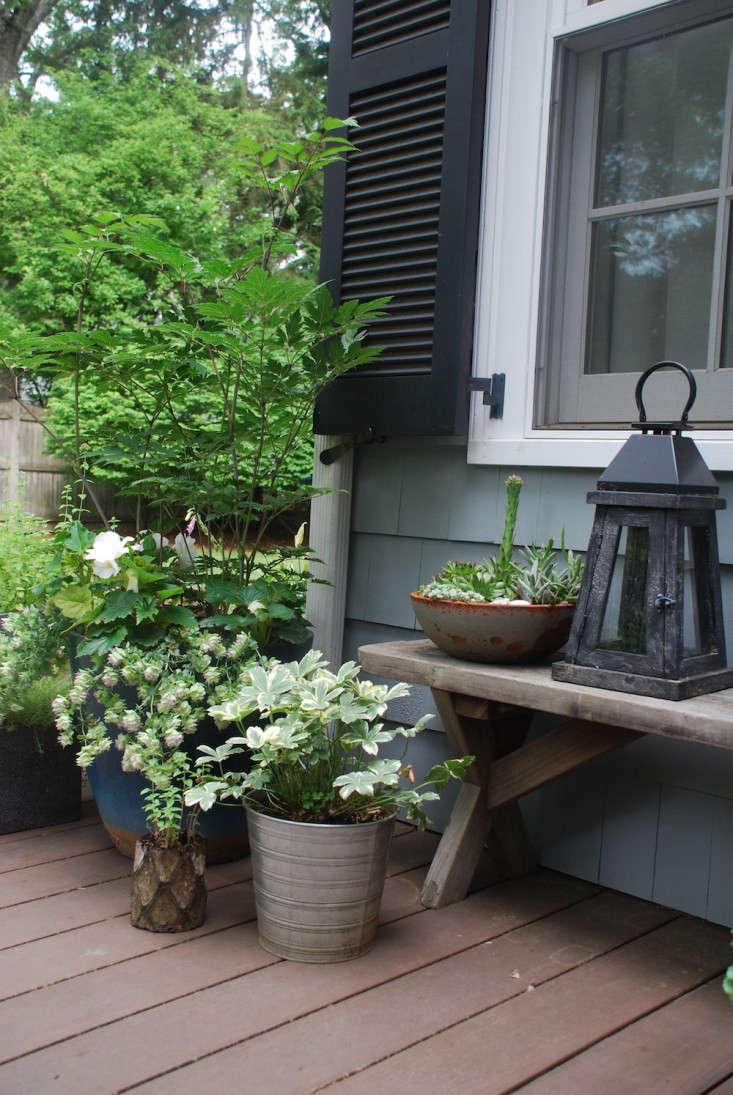 Susan-Nock-Finalist-Gardenista-Considered-Design-Awards-3