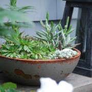 Susan-Nock-Finalist-Gardenista-Considered-Design-Awards-4