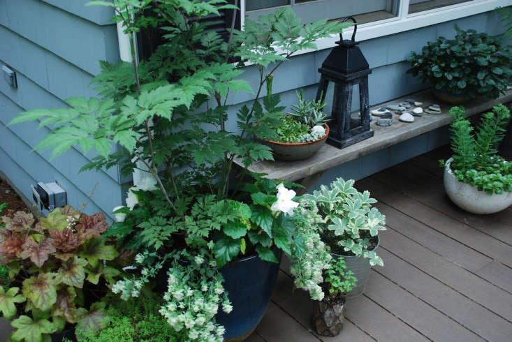 Susan-Nock-Finalist-Gardenista-Considered-Design-Awards-6