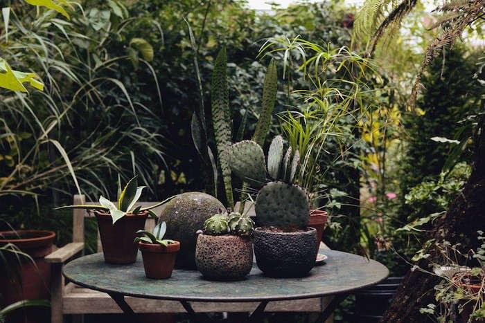 The-Garden-Edit02-Gardenista