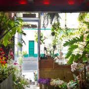 TomdeFleurs-02-Mimi-Giboin-Gardenista