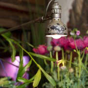 TomdeFleurs-26-Mimi-Giboin-Gardenista