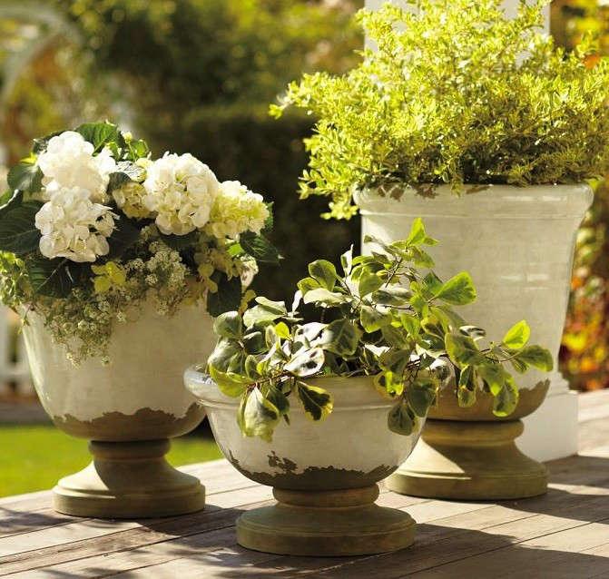 Tuscan-Glazed-Terra-Cotta-Garden-Urns-Gardenista