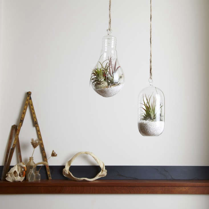 Twigs-ruler&hanging