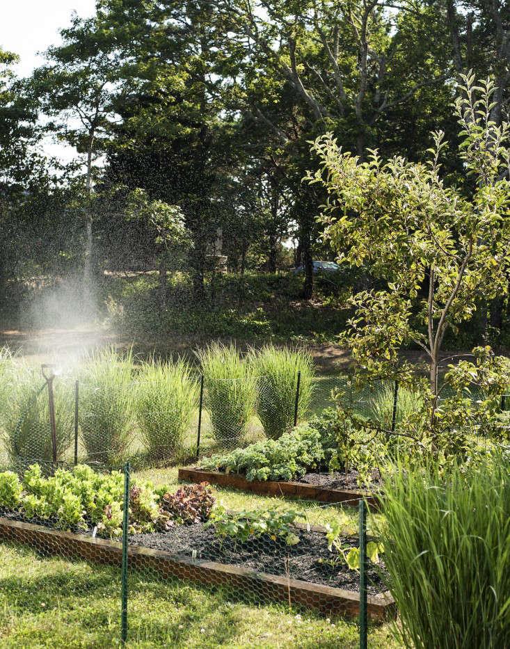 Wellfleet-Sheila-Narusawa-Garden-10-gardenista