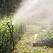 Wellfleet-Sheila-Narusawa-Garden-5-gardenista
