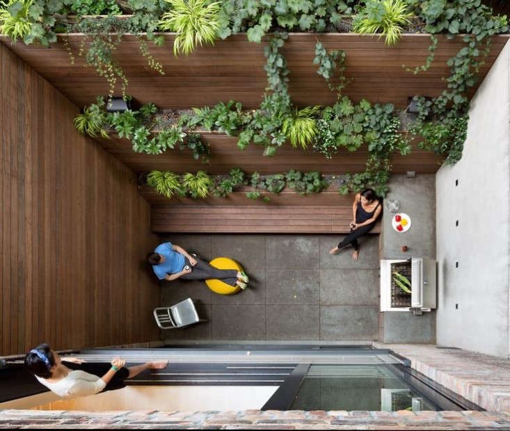 15 Tiny Outdoor Garden Ideas For The Urban Dweller: Architect Visit: A 15-Foot-Wide Garden For A West Village