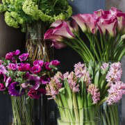 Winston flowers by M Piazza, hyacinths and anemones
