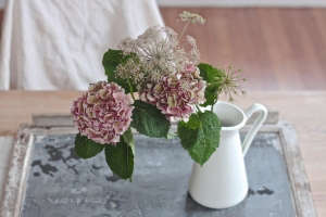 Winter Romance, Silver Brunia Bouquet, pink hydrangea and chocolate queen annes lace, Gardenista