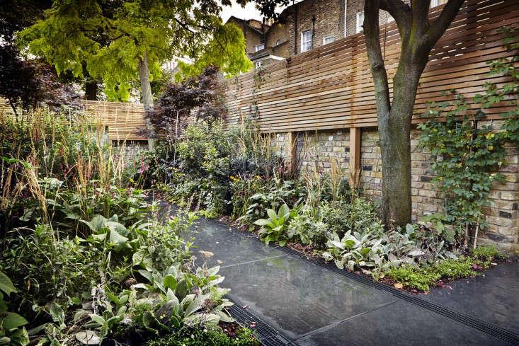 adam-shepherd-islington-garden-2-james-ross