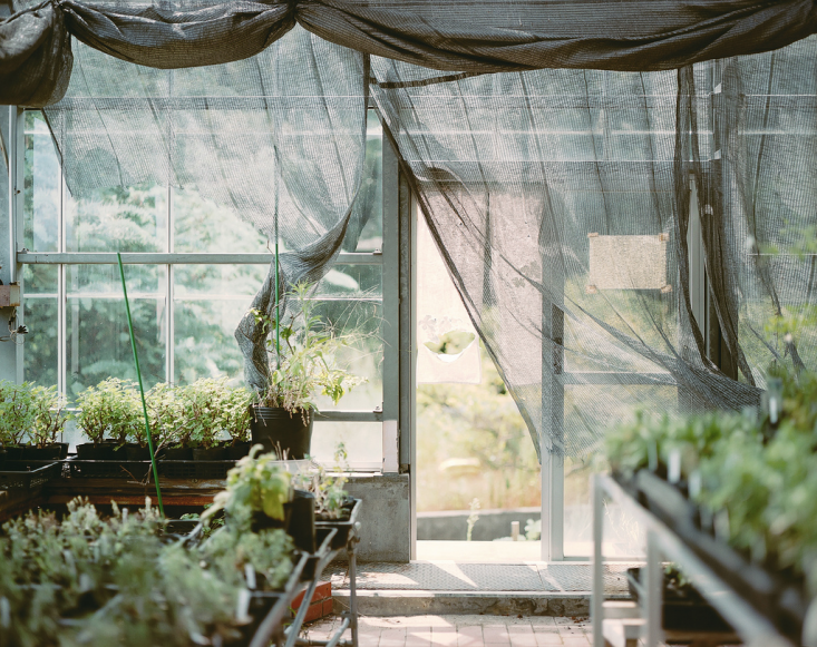 agriculture fabric as greenhouse curtains