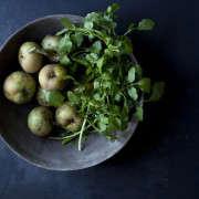 apples-andrea-gentl