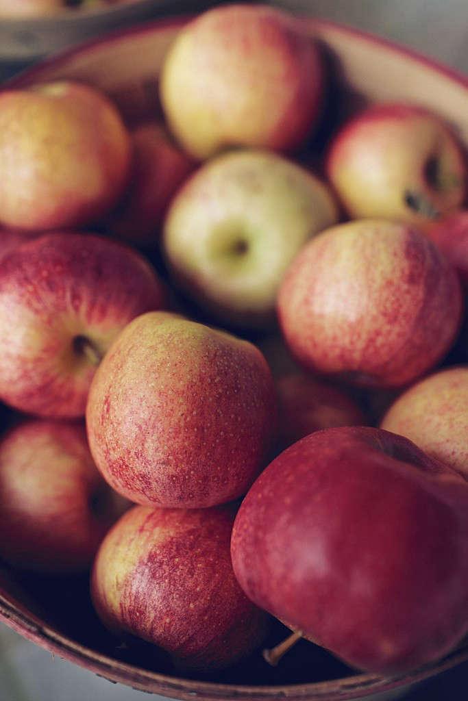 apples_applecoconutcrumble_oliviaraejames_gardenista