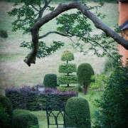 arne-maynard-garden-walies-topiary_summer-gardenista