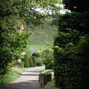 arne-maynard-wales-garden-first_glimpse_of_house-gardenista