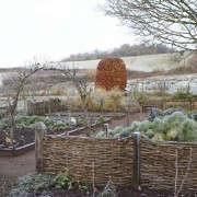 arne-maynard_kitchen_garden_britt_willoughby_dyer-gardenista