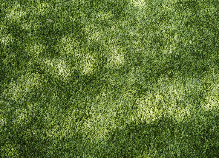 Pros And Cons Artificial Grass Versus A Live Lawn