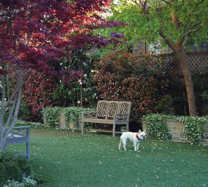 artificial-turf-pets-gardenista
