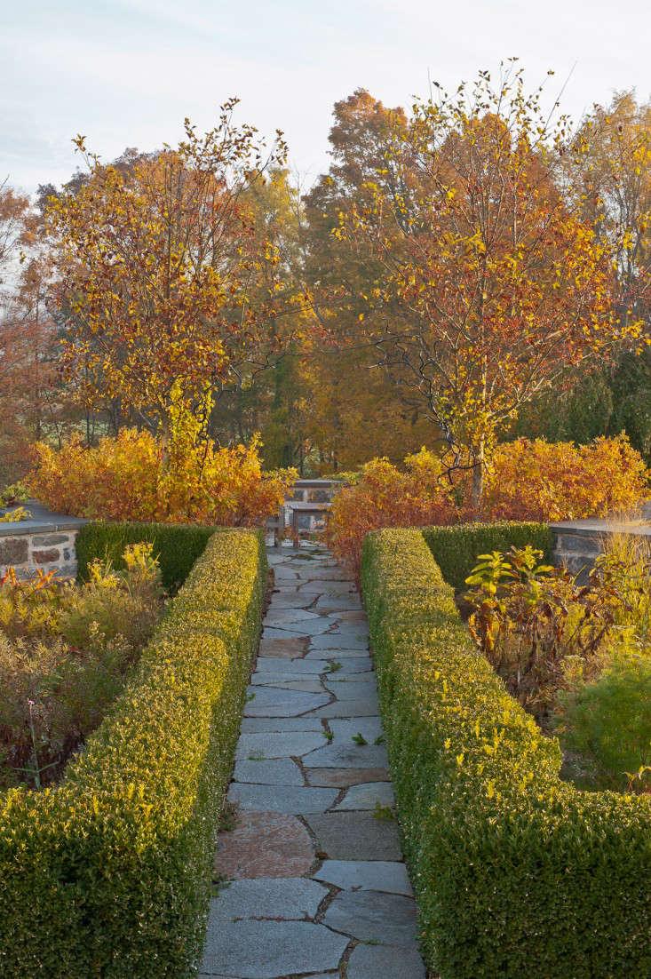 autumn-fall-colorful-garden-karen-bussolini-gardenista-3