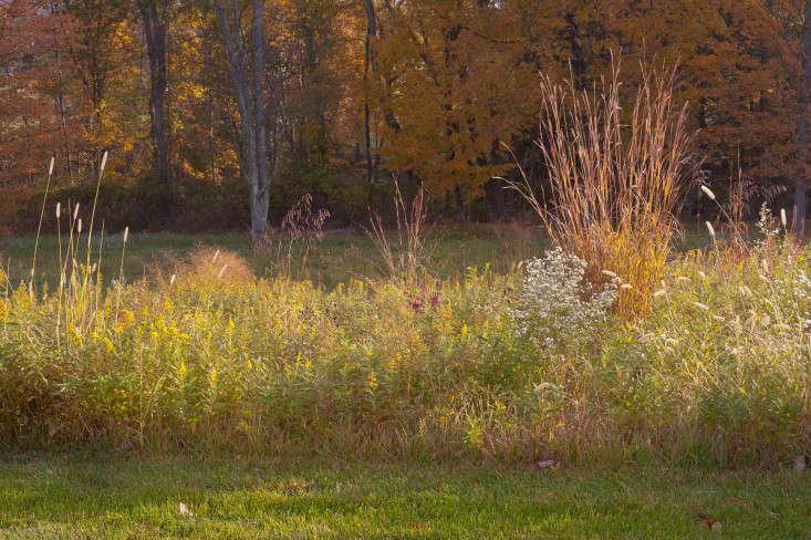 autumn-fall-colorful-garden-karen-bussolini-gardenista-4