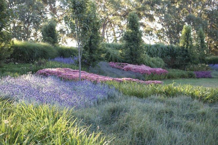 autumn-joy-sedum-paul-bangay-gardenista