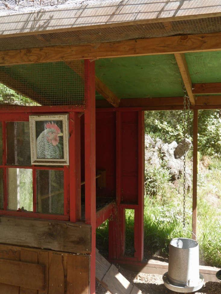 backyard-chicken-coop-chiquita-woodard-mill-valley-gardenista-8