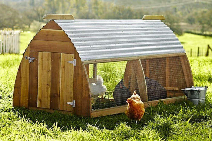 favorites backyard chicken coops for small flocks gardenista