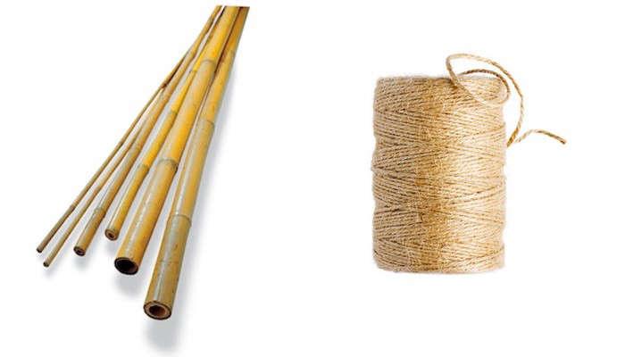 bamboo-garden-tuteurs-gardenista