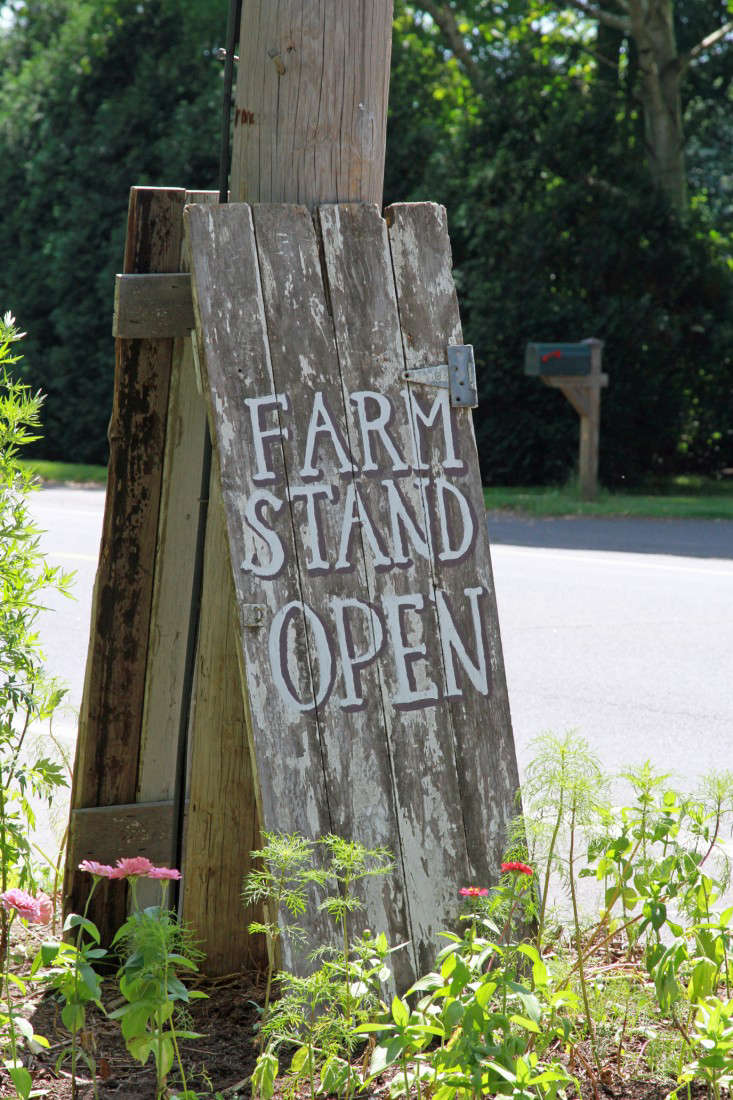 barberry hill farm stand