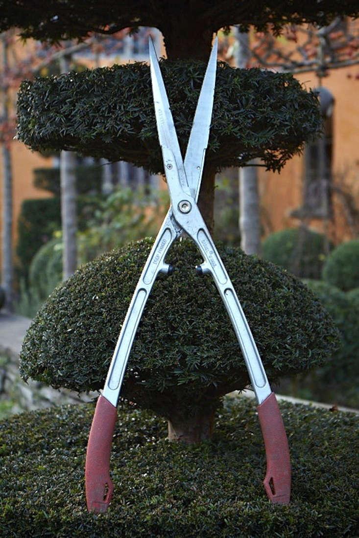 barnel_shears_britt_willoughby_dyer-gardenista