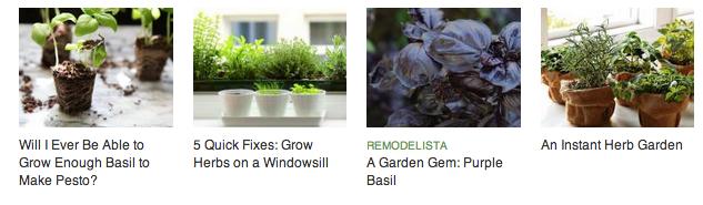 basil-posts-gardenista