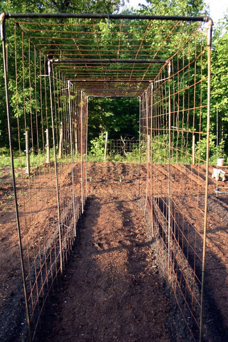 Metal elbow fittings connect poles to create a canopy. For similar hardware, 3/4-inchCopper 90-Degree Elbows are \$\1.79 each from Home Depot. A skin of wire mesh covers the skeleton. A roll of \14-gauge Welded Wire (\100 feet long by 4 feet wide) is \$89 from Home Depot.