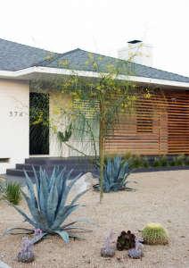 Budget landscape front yard makeover succulents; Gardenista