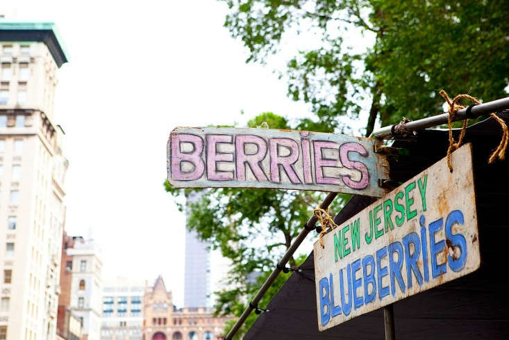 berries at union square