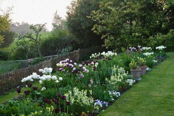 white garden ideas for house